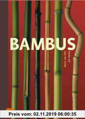 Gebr. - Bambus