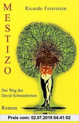 Gebr. - Mestizo: Der Weg des David Schnaiderman - Roman