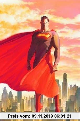 Gebr. - Superman & Batman Hs 8