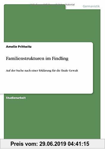 Gebr. - Familienstrukturen im Findling: Auf der Suche nach einer Erklärung für die finale Gewalt